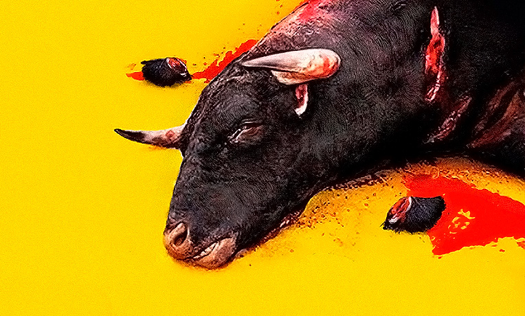 Firma por un Sanfermín sin corridas de toros