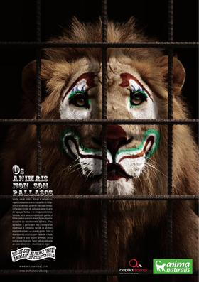 """Poster oficial de la campaña de """"Circos Sin Animales"""" que organizan de manera conjunta AcçãoAnimal, de Portugal, y AnimaNaturalis Internacional."""