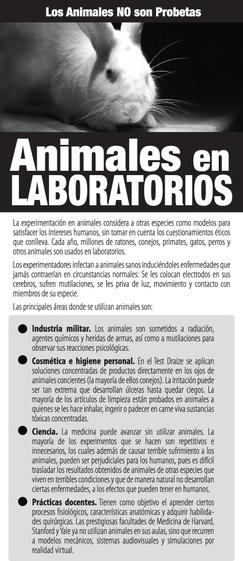 Los Animales NO son Probetas (México)