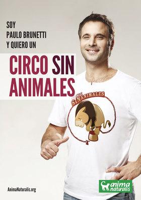 El actor chileno Paulo Brunetti se suma a la campaña de AnimaNaturalis por un Circo Sin Animales.