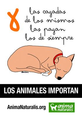 Cartel para recordar la muerte del perro Excálibur, víctima de la negligencia frente a la posible epidemia de ébola en España.