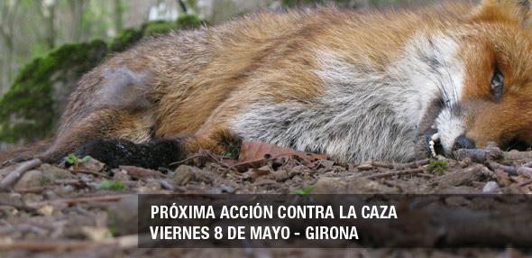 Acto contra la caza en Girona