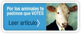 Artículo de AnimaNaturalis sobre                                 las elecciones generales 2011