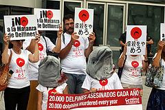 Día Mundial en contra de la matanza de Delfines de Taijin