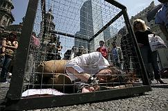 Activista enjaulada 12 horas por los circos con animales