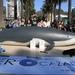 Activistas de AnimaNaturalis ensangrentados simulan ser ballenas cazadas.