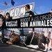 Protesta contra el circo Roma en Mallorca