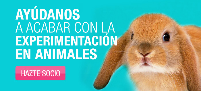 No mas animales de laboratorio!