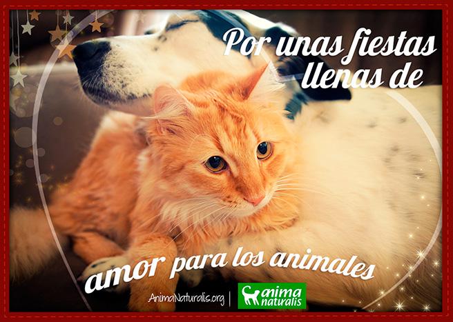 Por unas fiestas llenas de amor para los animales