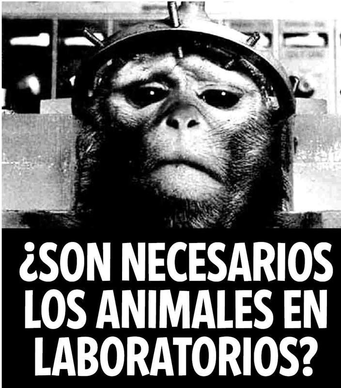 Contra la experimentación con animales, desde una perspectiva científica