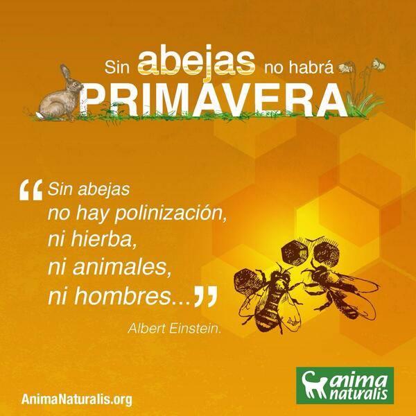 La miel de abejas y sus ¿propiedades nutricionales?