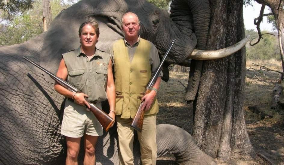 ¡Actúa ya! ¡Manda una carta postal al Rey de España en contra de la caza!