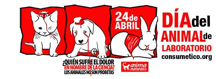 ¡Únete a los actos de protesta contra la experimentación en animales!