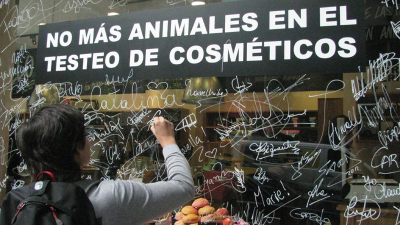 En Chile, AnimaNaturalis se sumo a LUSH en su cruzada contra la experimentación en animales