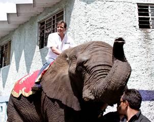 ¡Candidato de la coalición PRI-PVEM utilizó elefanta para propaganda política!