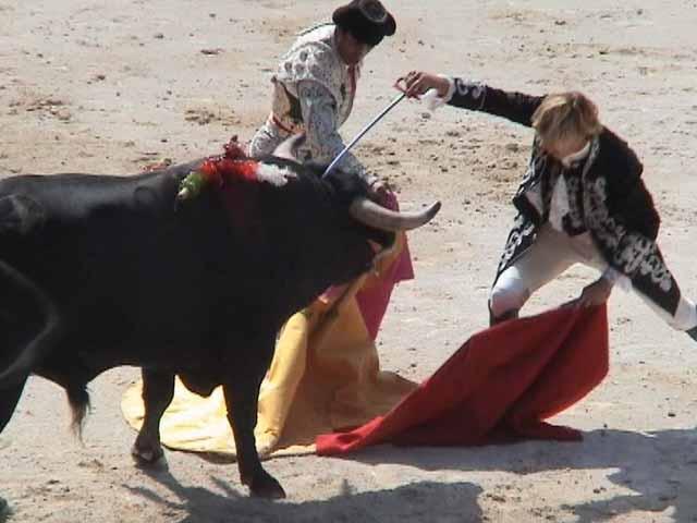 ¡Apoya la iniciativa para prohibir corridas de toros en San Luis Potosí!