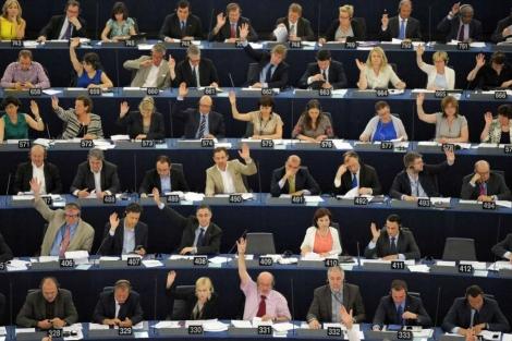 La Eurocámara pide una normativa para proteger a los animales de compañía