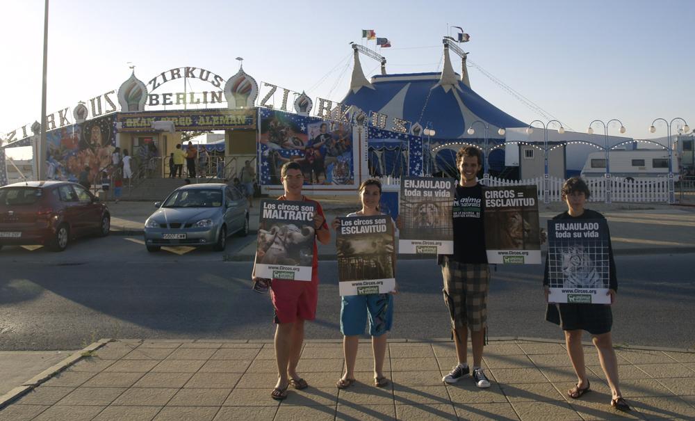 AnimaNaturalis protesta contra el Circo Berlín en Tarifa