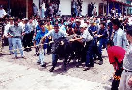 ¡Protesta HOY por inclusión de tauromaquia y vaquilladas en Fiestas Patronales de Xico!