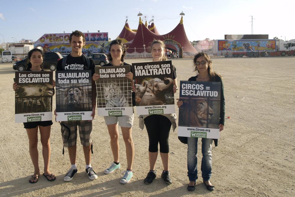 AnimaNaturalis protestó contra elCirco Alaska en Cádiz