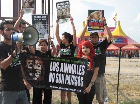"""Activistas protestan contra """"Circo Atayde Hermanos"""" en Monterrey"""