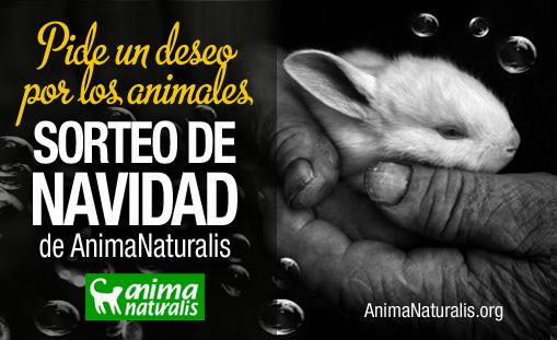 ¡Once tiendas de La Rioja venden lotería de AnimaNaturalis!