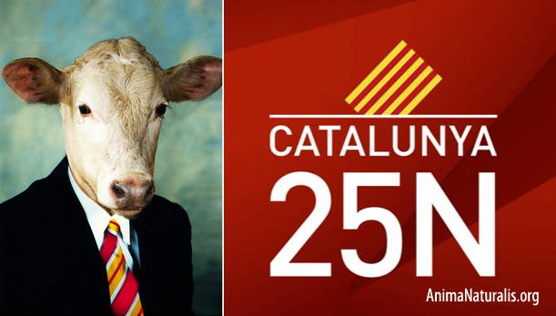¿Quién defenderá a los animales en el Parlament? Elecciones Catalunya 2012
