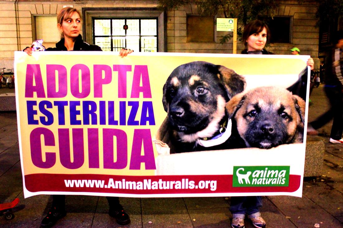 AnimaNaturalis protestó contra la venta de animales en Barcelona