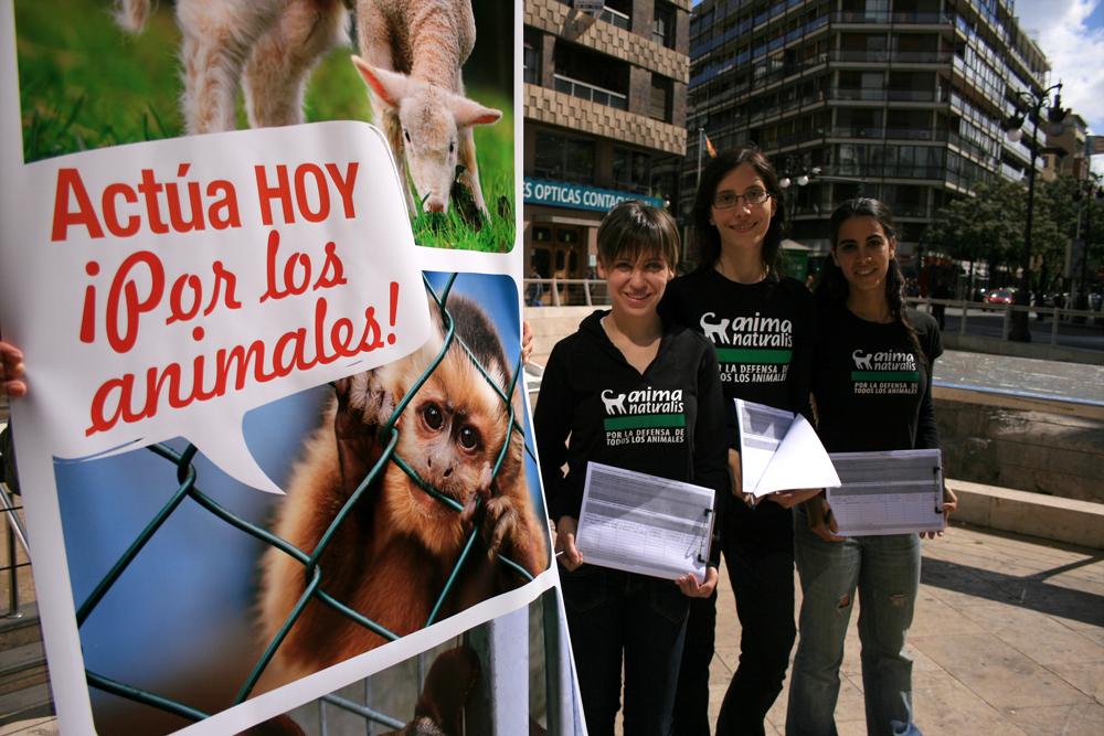 AnimaNaturalis conmemoró el Día Mundial del Animal en Laboratorios