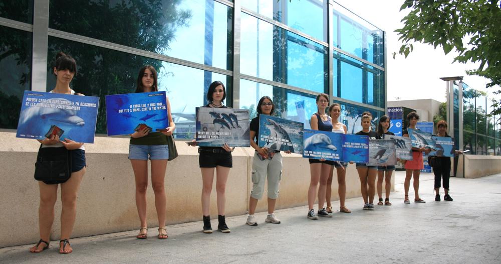SOS Delfines se concentra contra el cautiverio de delfines