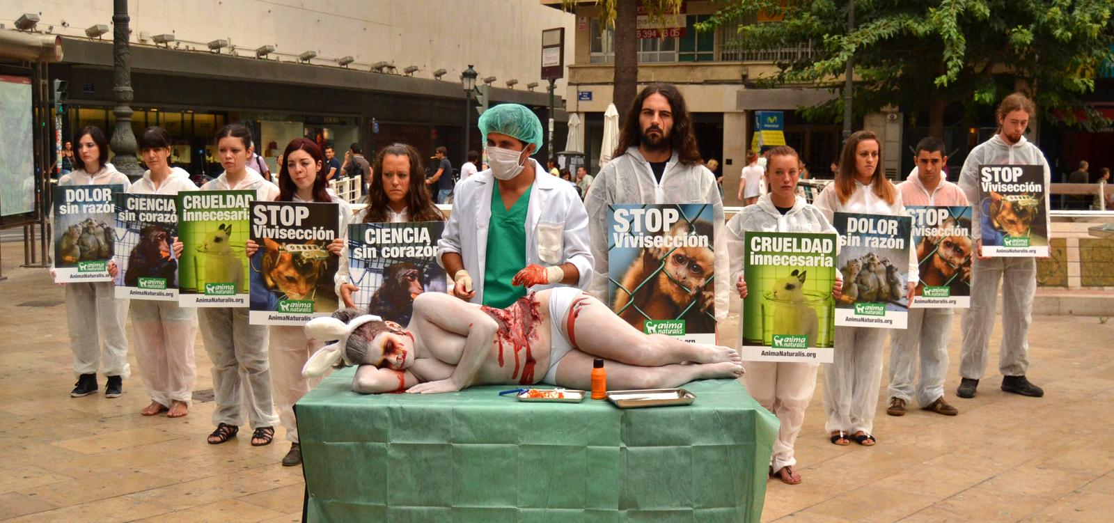 ¡Maratón de recogida de firmas de AnimaNaturalis contra vivisección!