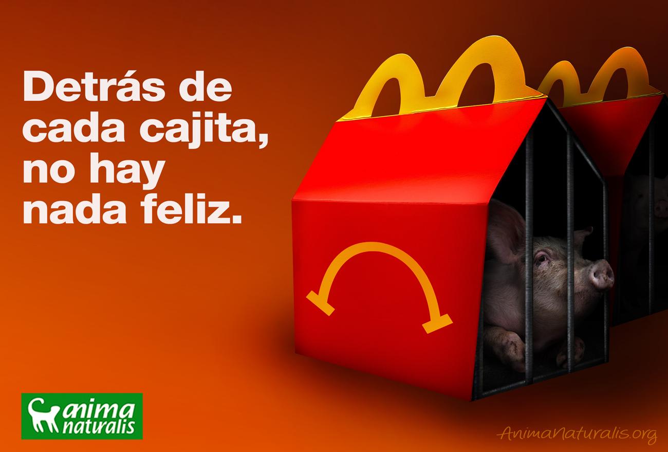 AnimaNaturalis exige a McDonald's el fin de las jaulas de gestación para cerdas ¡Ayúdanos!