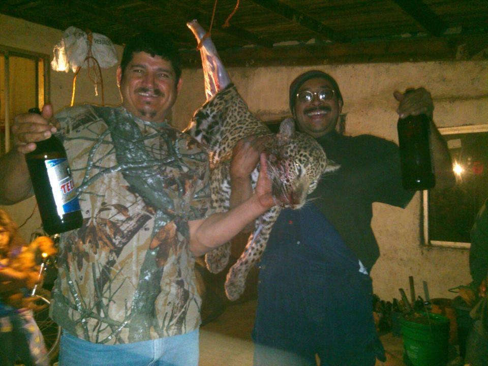 ¡Exige sanción por indignante muerte de jaguar en Nuevo León!