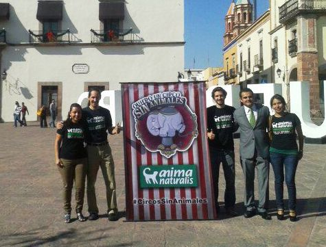 ¡Felicidades, Querétaro: primer estado de la República en prohibir los circos con animales!