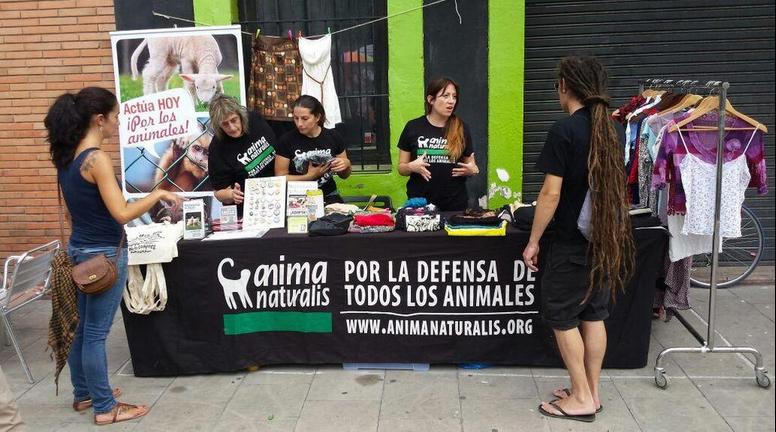 AnimaNaturalis en el Flea Market de Barcelona