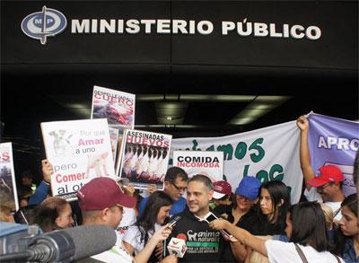 Defensores animales piden crear fiscalías especiales en contra del maltrato