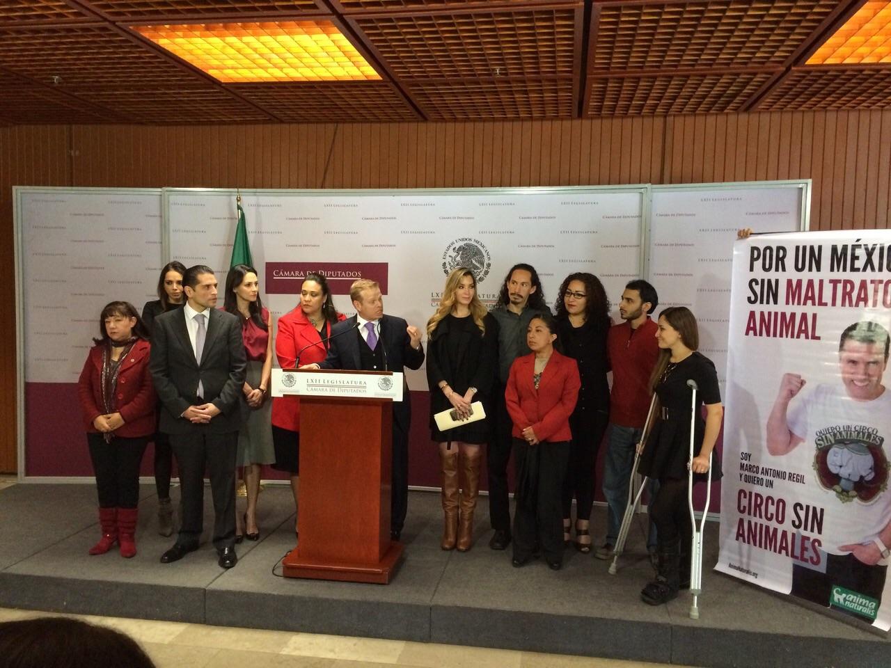 ¡México prohíbe el uso de animales en circos!