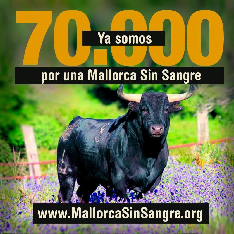 Más de 70.000 firmas contra la tauromaquia en Mallorca