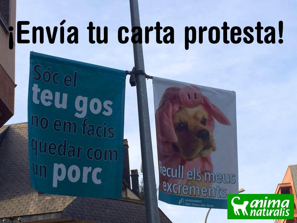 Envía tu carta protesta al Ayto de Sant Vicenç dels Horts