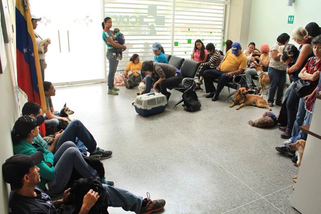Venezuela instalará 10 centros populares de atención veterinaria en diferentes regiones