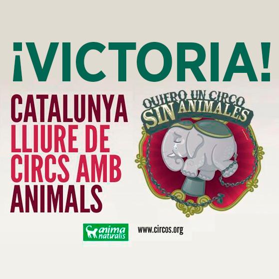 Histórico: Cataluña prohibe el uso de animales salvajes en circos