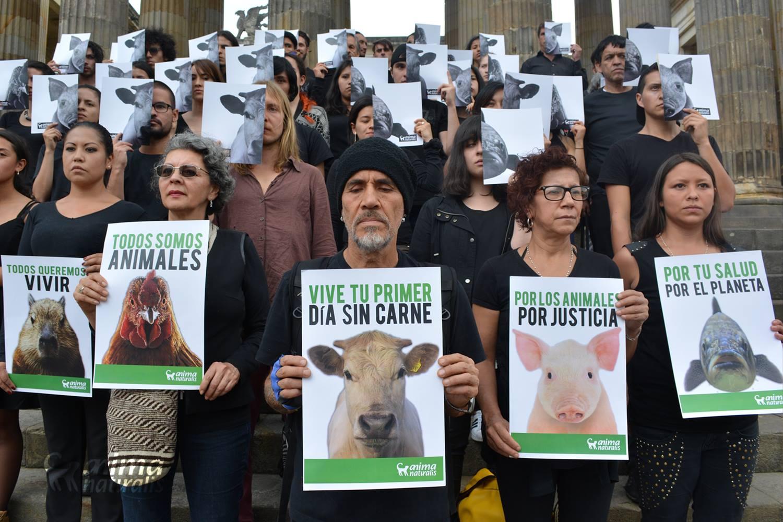 Conmemoramos con éxito el 'Día mundial sin carne'