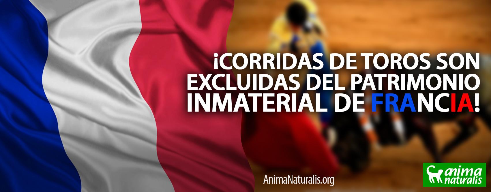 ¡Gran logro! Francia excluye a las corridas de toros del patrimonio cultural inmaterial
