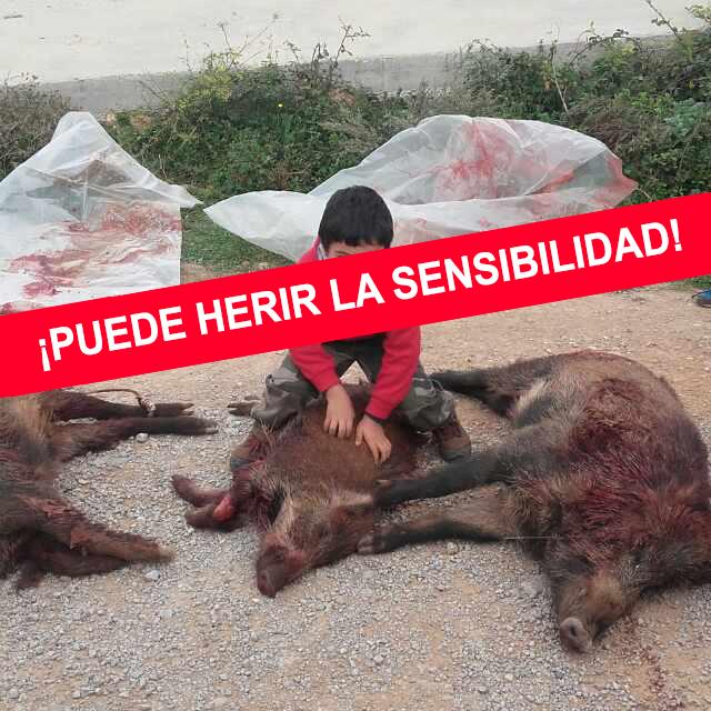 Brutal vídeo: AnimaNaturalis denuncia a un cazador por llevar a sus hijos menores de caza