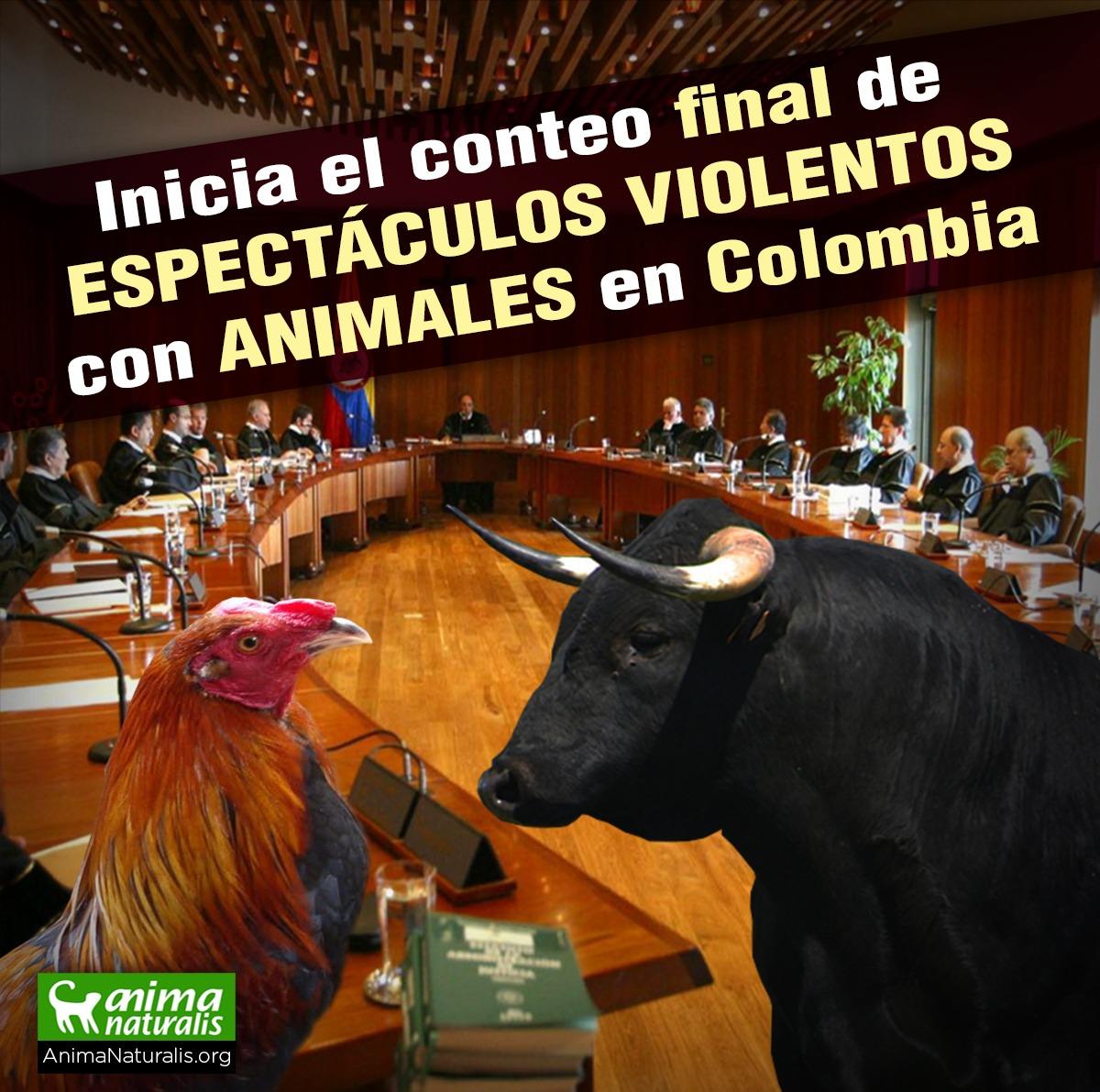 Inicia el conteo final de la corridas de toros en Colombia