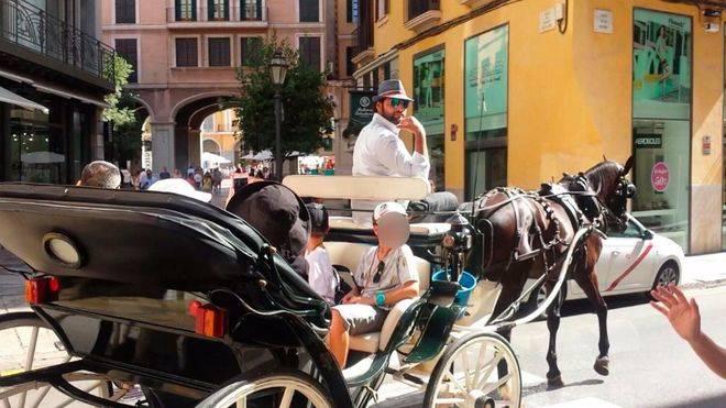Incumplimiento de los acuerdos para el bienestar de los caballos de galeras