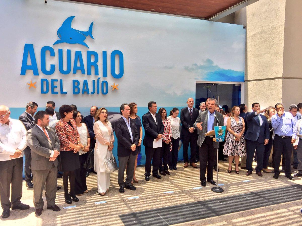 Inauguran el Acuario del Bajío: nueva prisión para los animales marinos