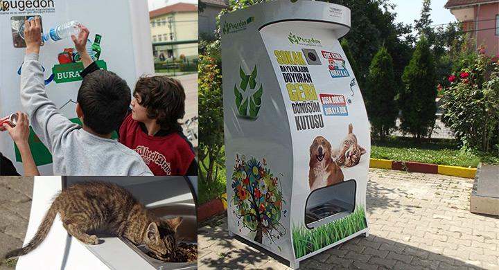 Jóvenes de Lima instalarán dispensador de comida para animales sin hogar