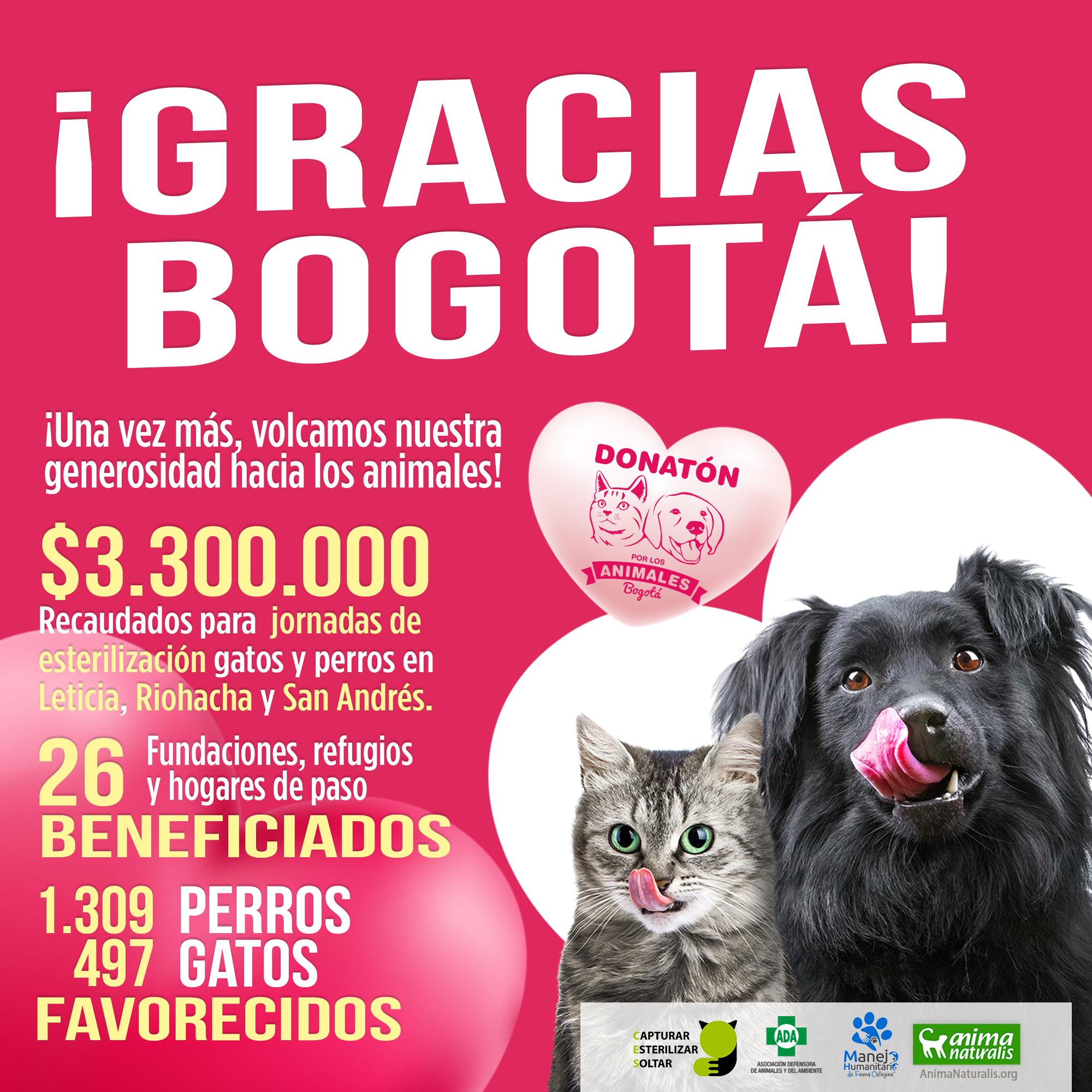 ¡Gracias Bogotá! 1.309 perros y 497 gatos serán beneficiados con Donatón
