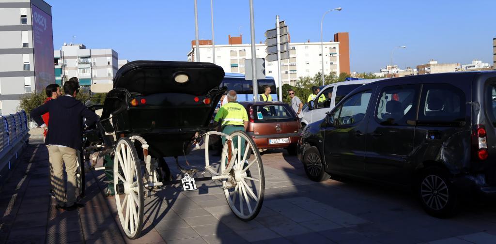 Un caballo de galera desbocado choca contra siete coches en Palma